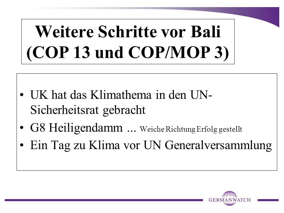 Weitere Schritte vor Bali (COP 13 und COP/MOP 3)