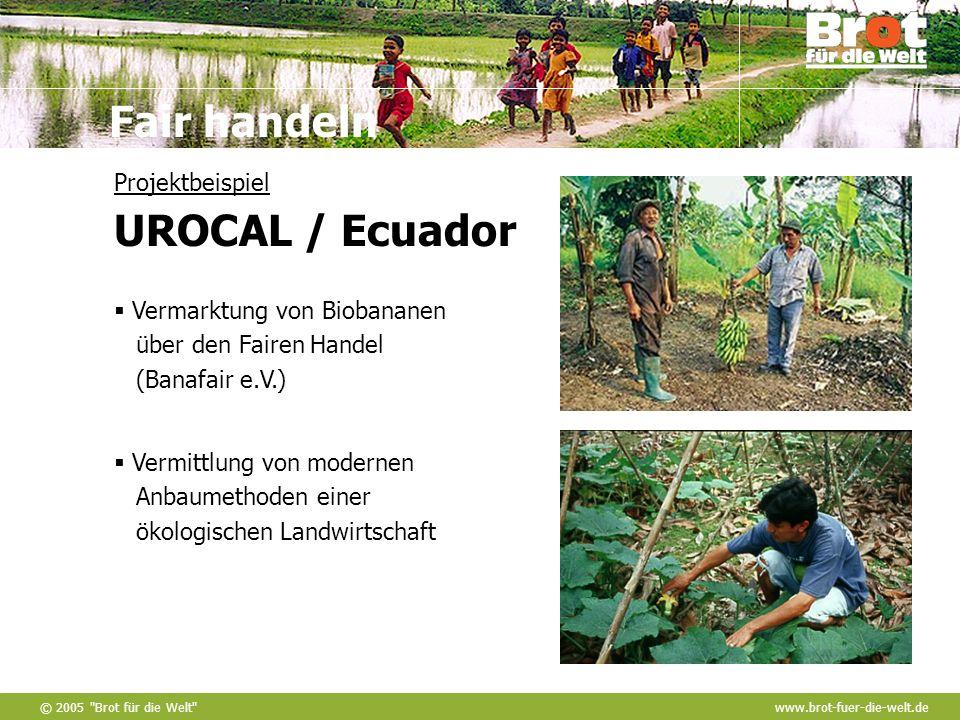 Projektbeispiel UROCAL / Ecuador