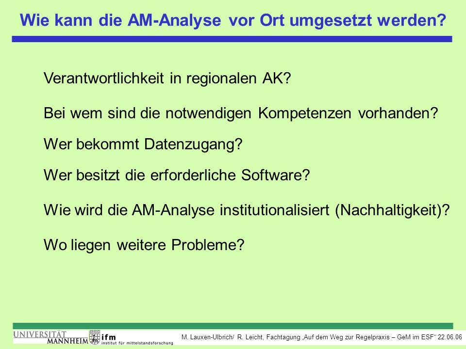 Wie kann die AM-Analyse vor Ort umgesetzt werden