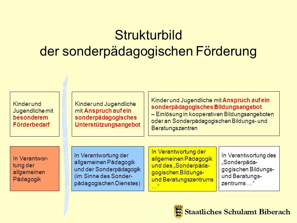 Strukturbild der sonderpädagogischen Förderung