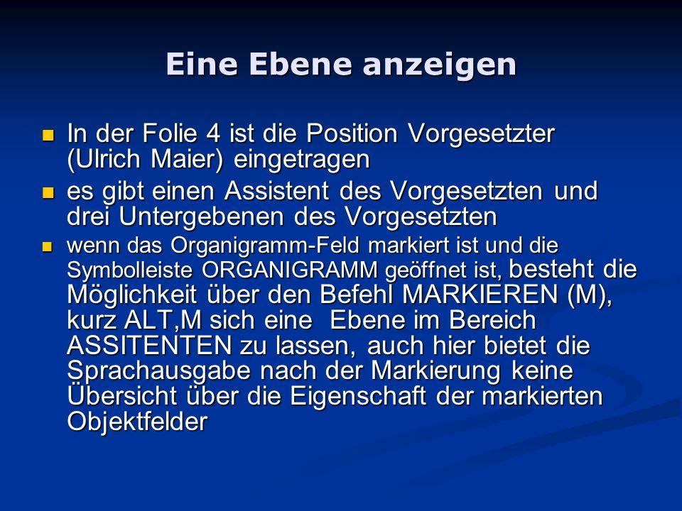 Eine Ebene anzeigen In der Folie 4 ist die Position Vorgesetzter (Ulrich Maier) eingetragen.