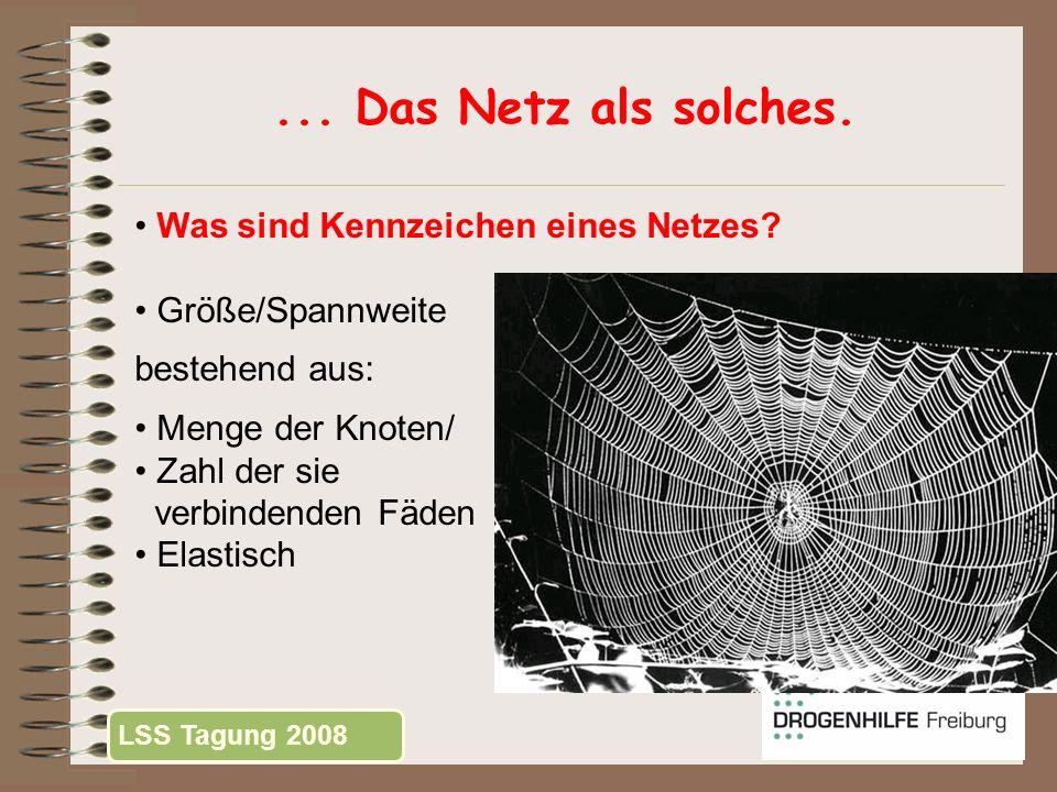 ... Das Netz als solches. Was sind Kennzeichen eines Netzes