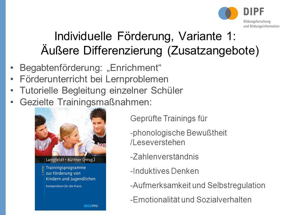 Individuelle Förderung, Variante 1: Äußere Differenzierung (Zusatzangebote)