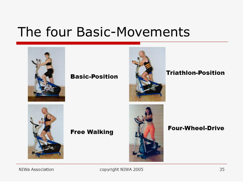 The four Basic-Movements