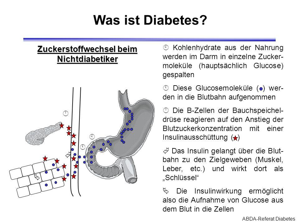 Zuckerstoffwechsel beim Nichtdiabetiker