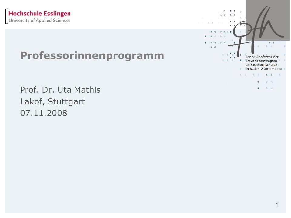 Professorinnenprogramm