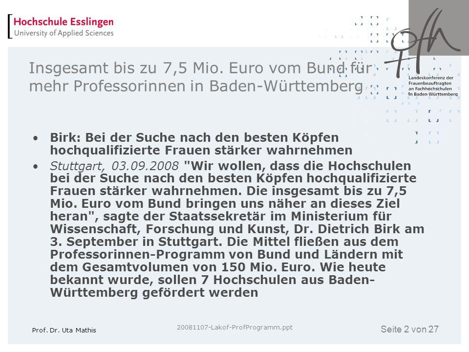 Insgesamt bis zu 7,5 Mio. Euro vom Bund für mehr Professorinnen in Baden-Württemberg