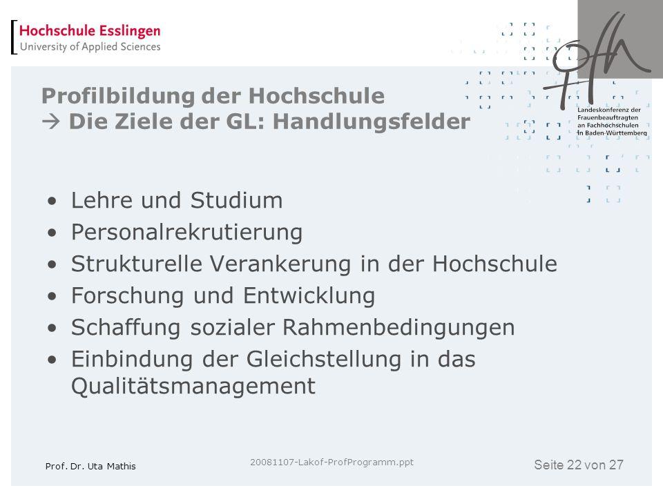 Profilbildung der Hochschule  Die Ziele der GL: Handlungsfelder