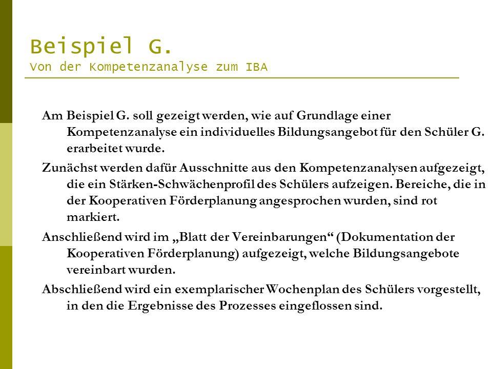 Beispiel G. Von der Kompetenzanalyse zum IBA