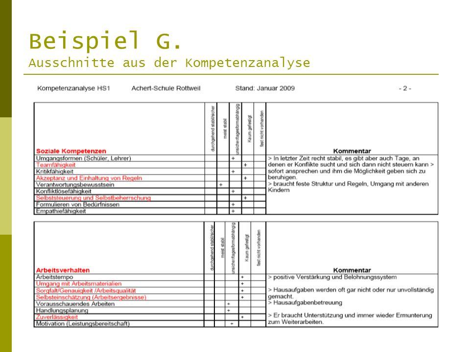 Beispiel G. Ausschnitte aus der Kompetenzanalyse