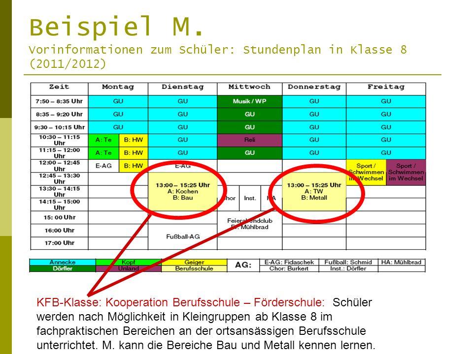 Beispiel M. Vorinformationen zum Schüler: Stundenplan in Klasse 8 (2011/2012)