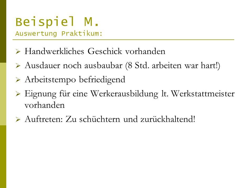 Beispiel M. Auswertung Praktikum:
