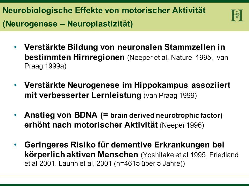 Neurobiologische Effekte von motorischer Aktivität (Neurogenese – Neuroplastizität)