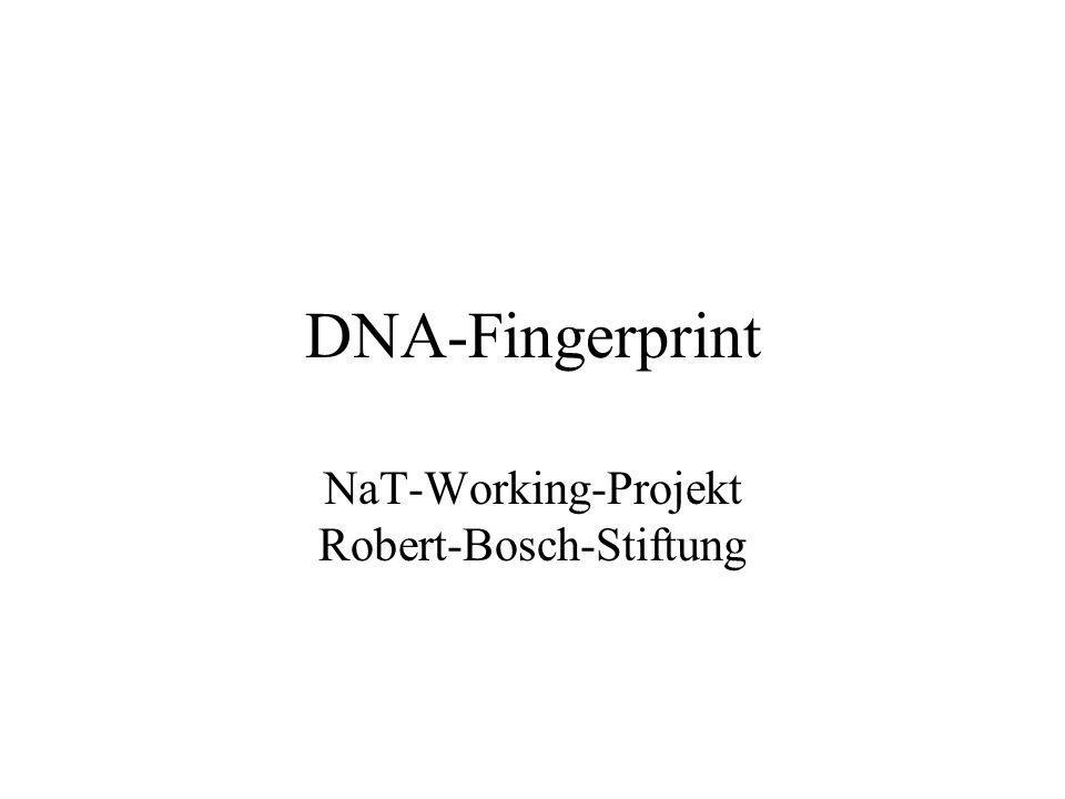 NaT-Working-Projekt Robert-Bosch-Stiftung