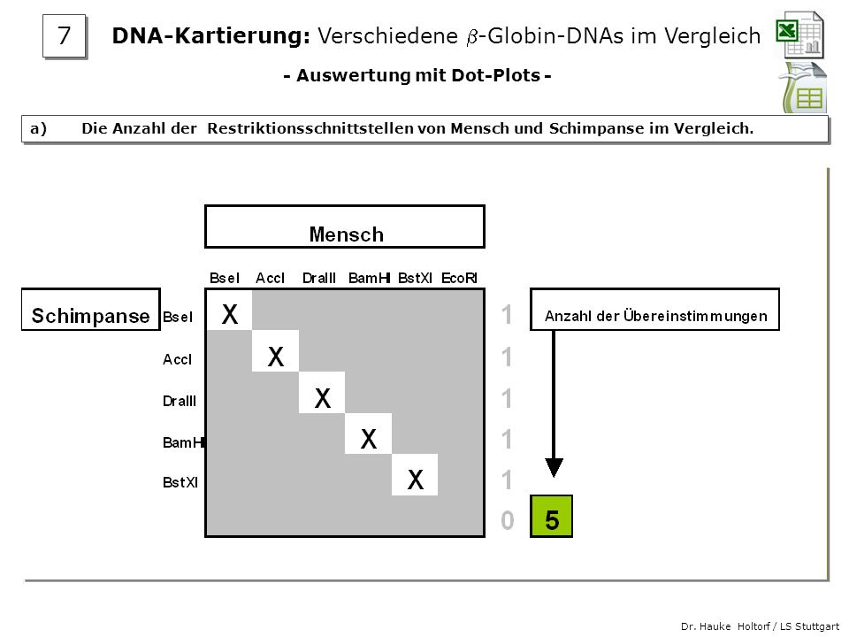 - Auswertung mit Dot-Plots -