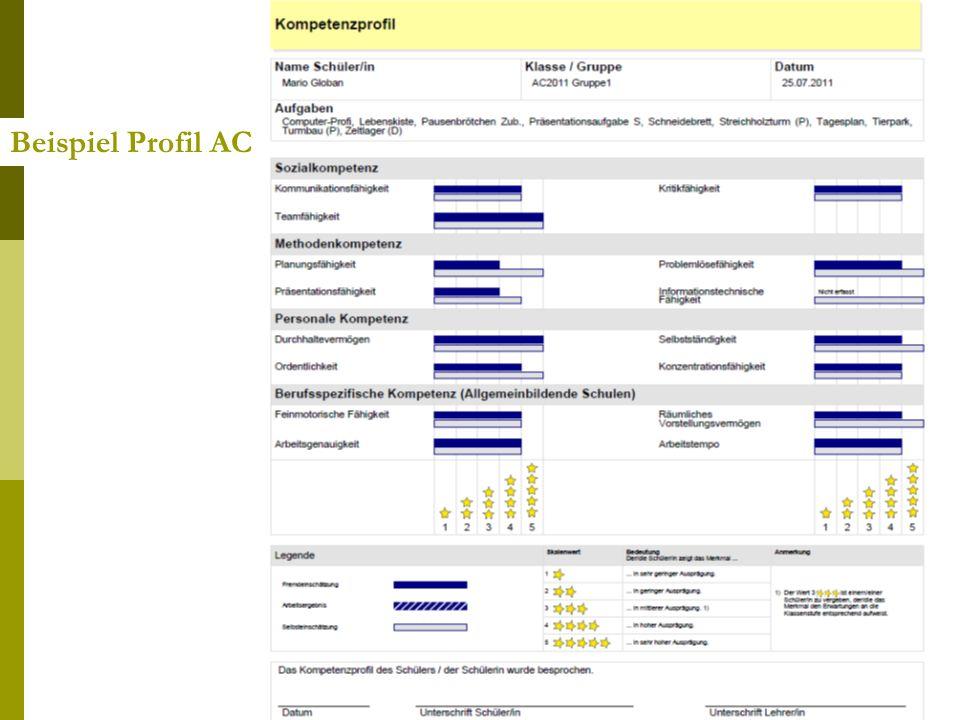 Beispiel Profil AC