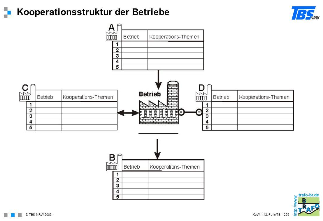 Kooperationsstruktur der Betriebe