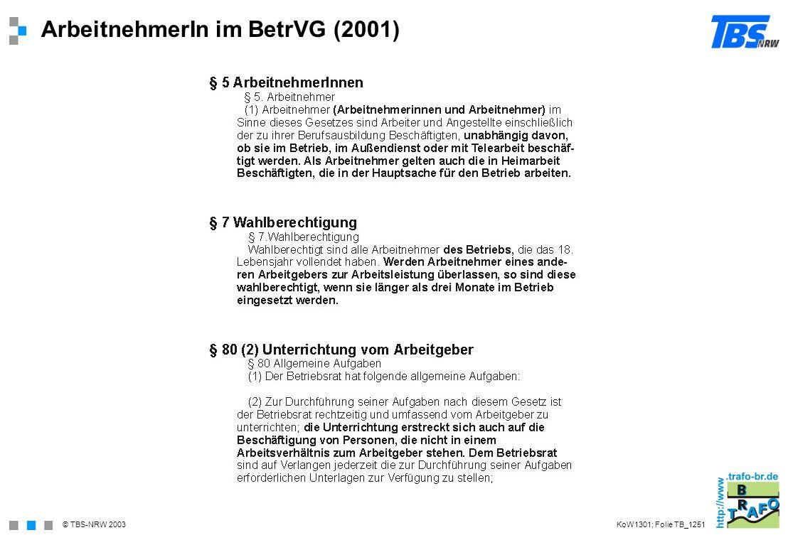ArbeitnehmerIn im BetrVG (2001)