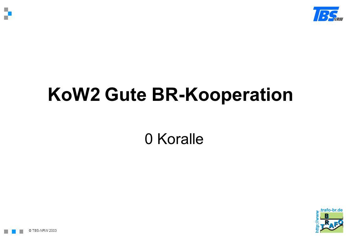 KoW2 Gute BR-Kooperation