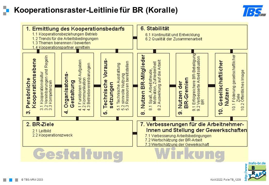 Kooperationsraster-Leitlinie für BR (Koralle)
