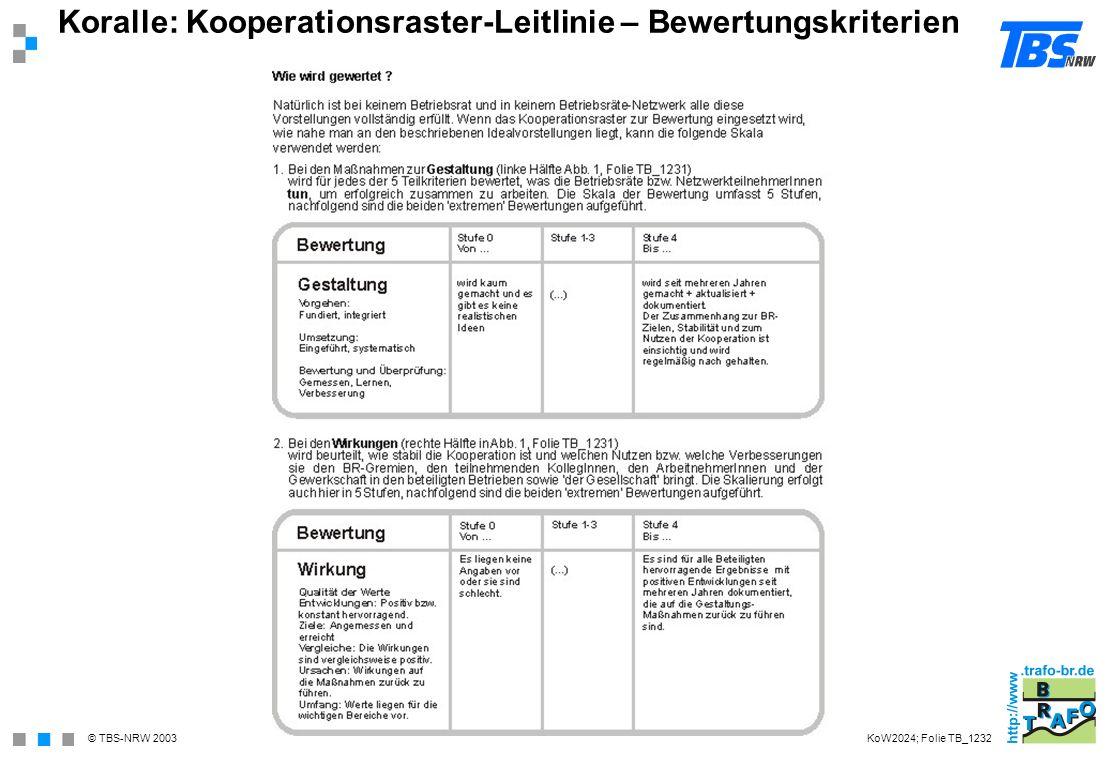 Koralle: Kooperationsraster-Leitlinie – Bewertungskriterien