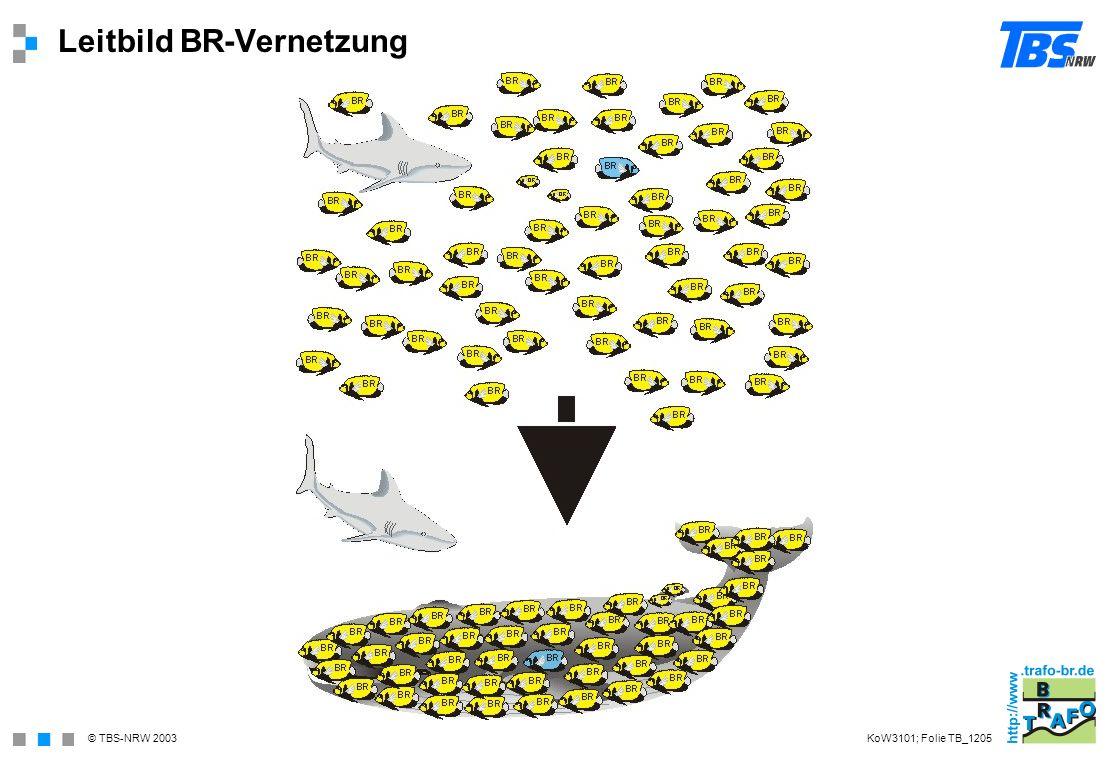 Leitbild BR-Vernetzung