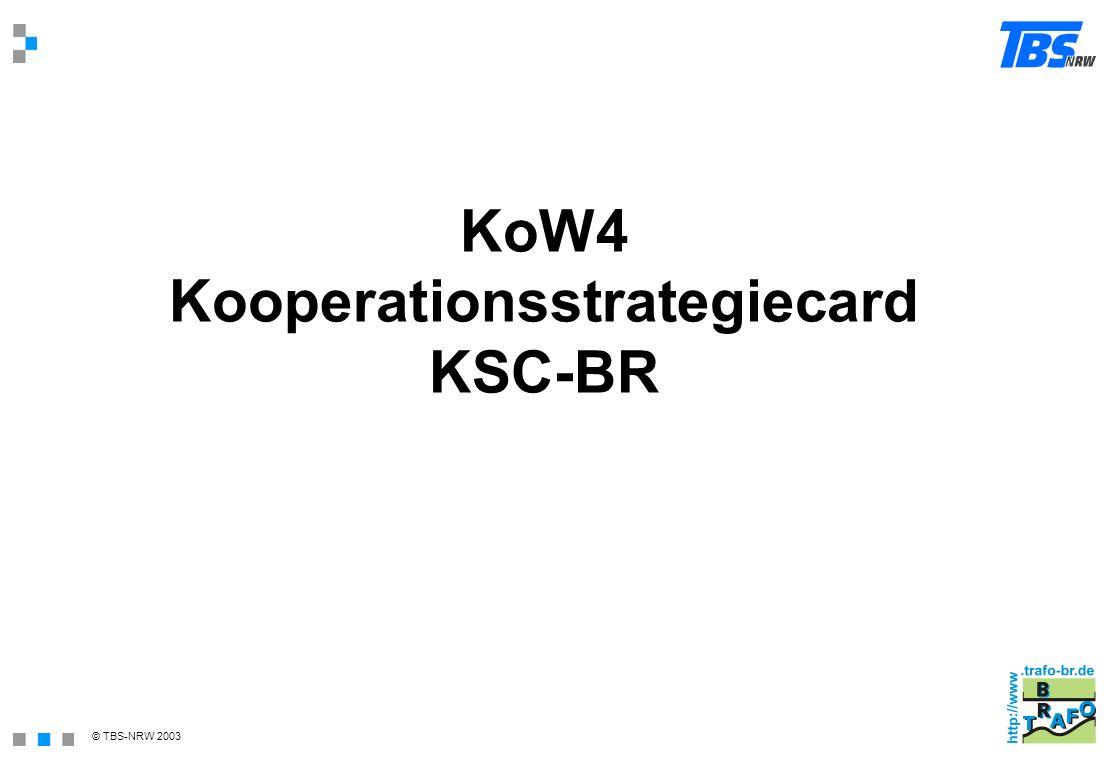 KoW4 Kooperationsstrategiecard KSC-BR