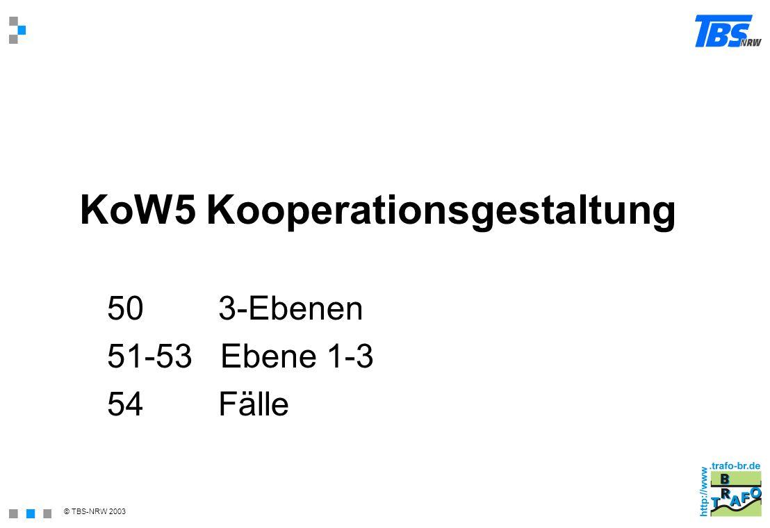 KoW5 Kooperationsgestaltung