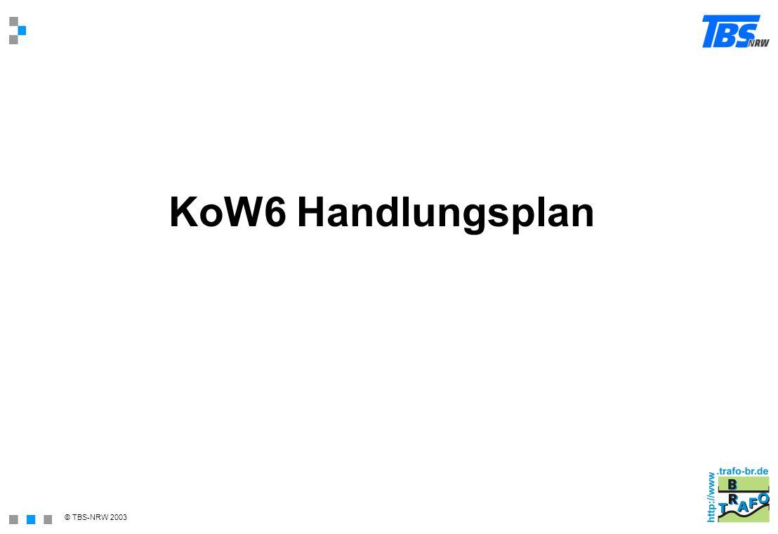 KoW6 Handlungsplan