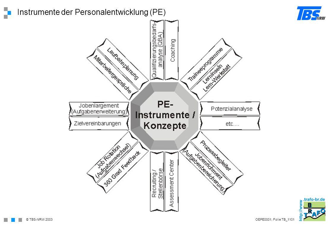 Instrumente der Personalentwicklung (PE)