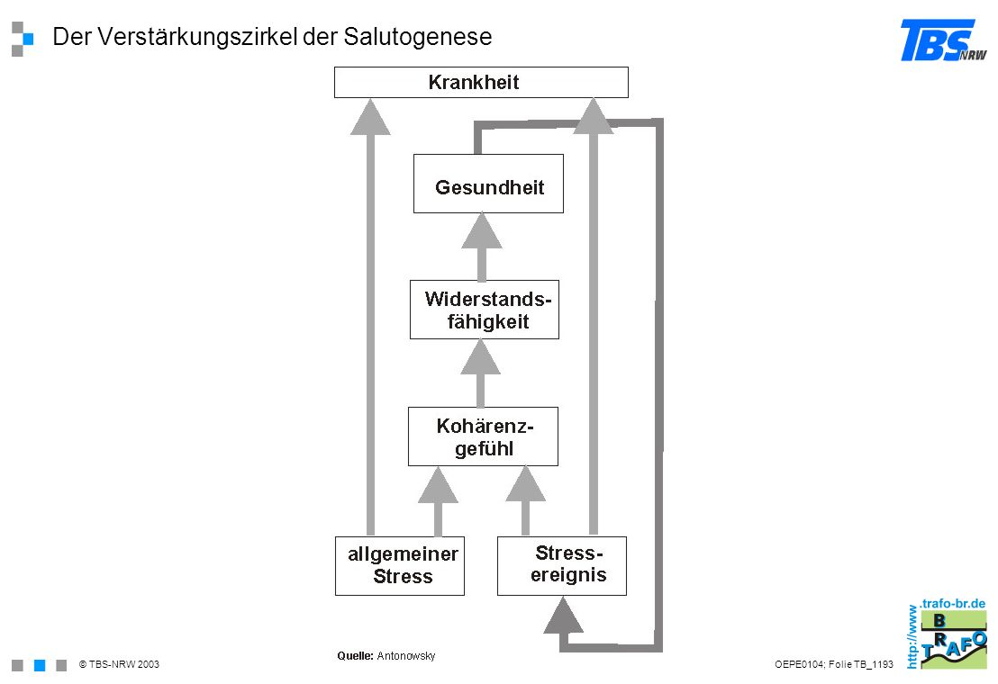Der Verstärkungszirkel der Salutogenese