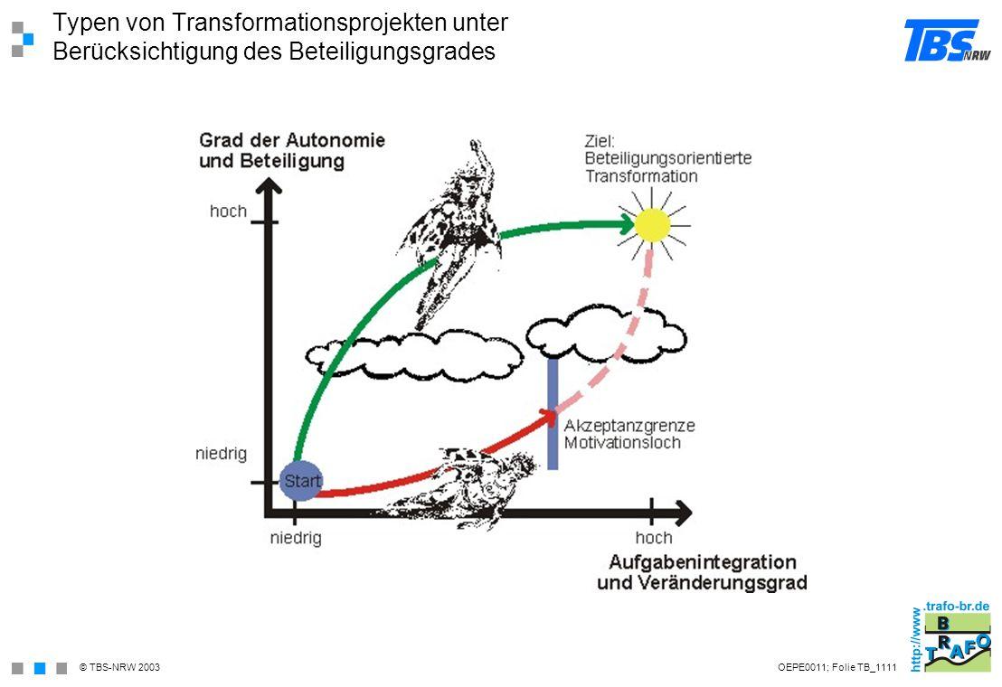 Typen von Transformationsprojekten unter Berücksichtigung des Beteiligungsgrades