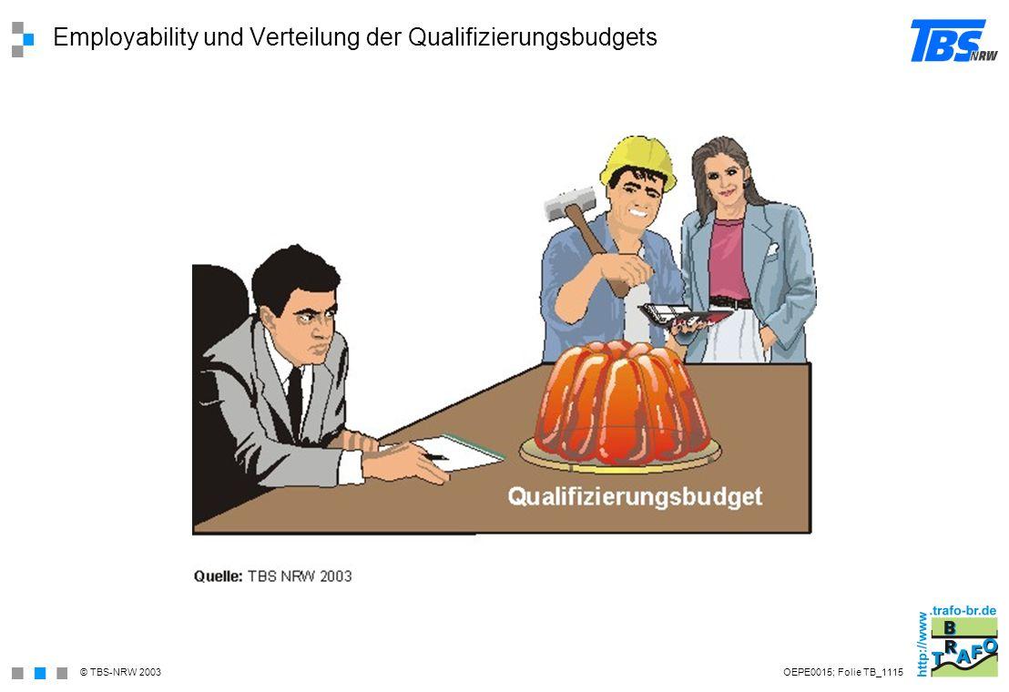 Employability und Verteilung der Qualifizierungsbudgets