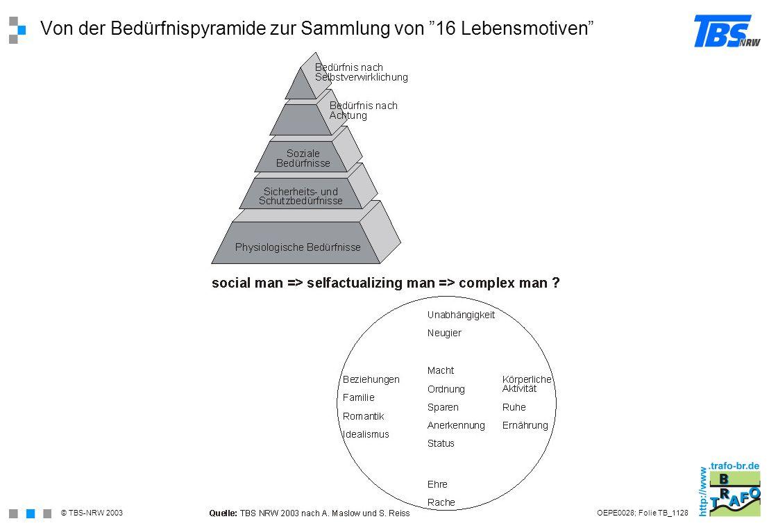 Von der Bedürfnispyramide zur Sammlung von 16 Lebensmotiven