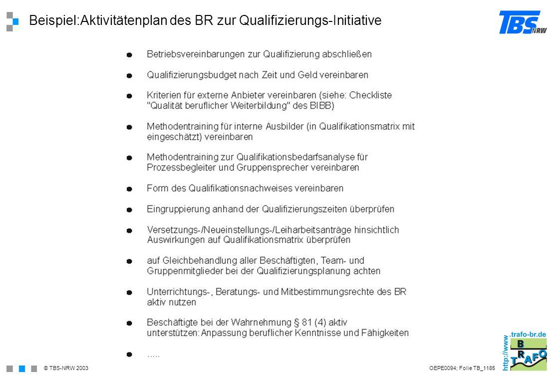 Beispiel:Aktivitätenplan des BR zur Qualifizierungs-Initiative