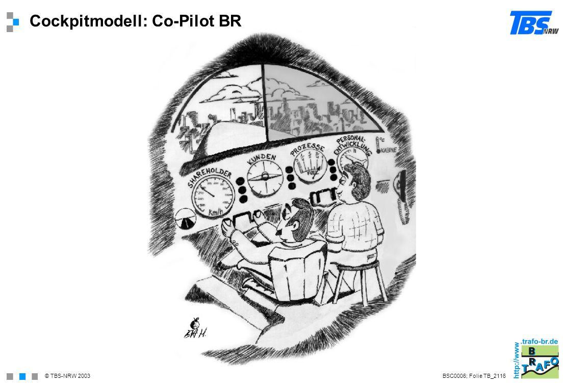 Cockpitmodell: Co-Pilot BR