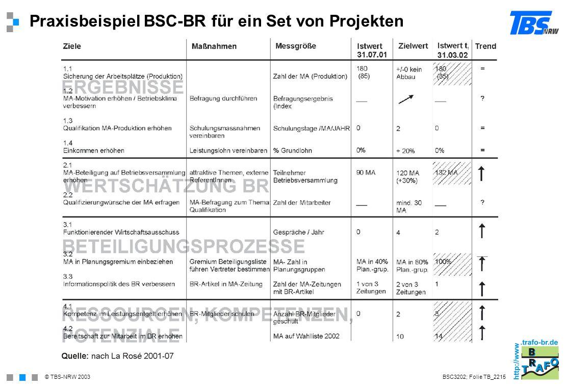 Praxisbeispiel BSC-BR für ein Set von Projekten