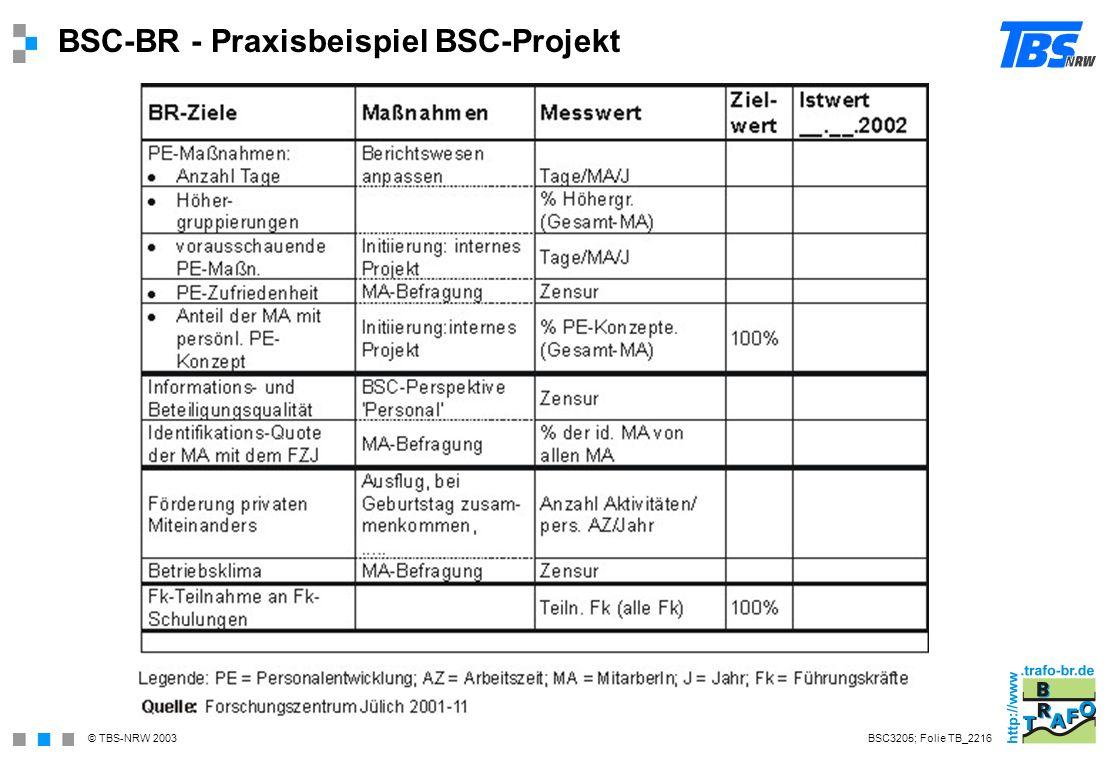 BSC-BR - Praxisbeispiel BSC-Projekt