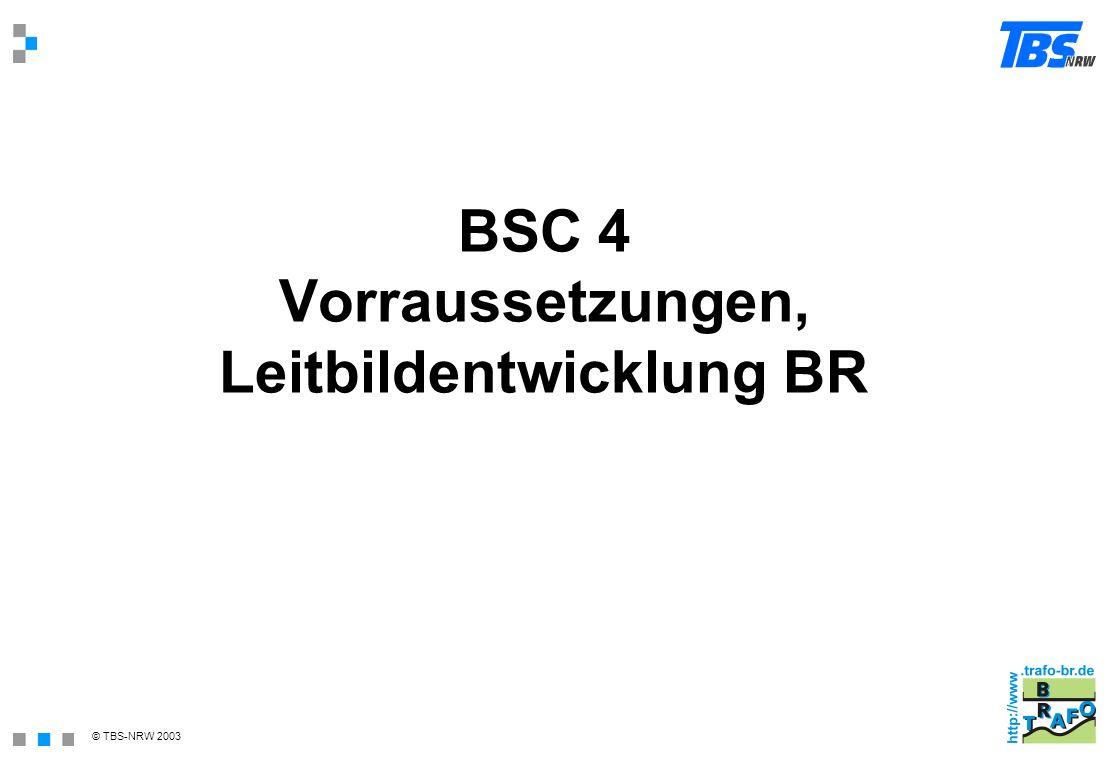 BSC 4 Vorraussetzungen, Leitbildentwicklung BR