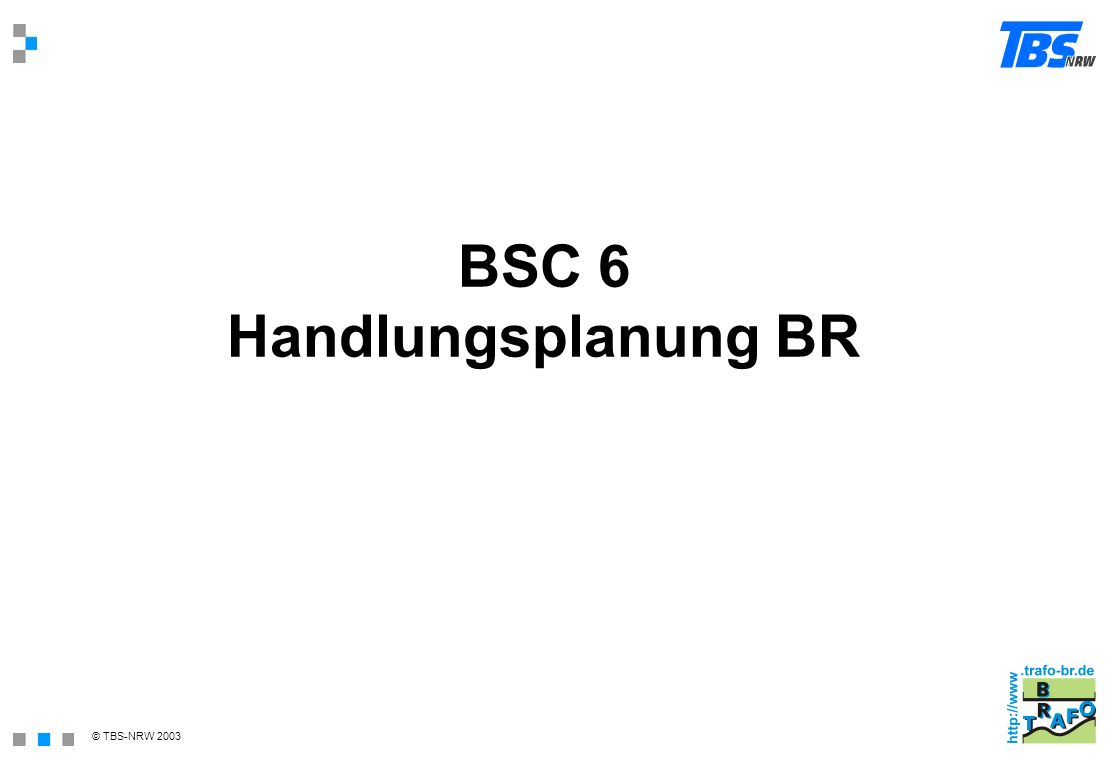 BSC 6 Handlungsplanung BR