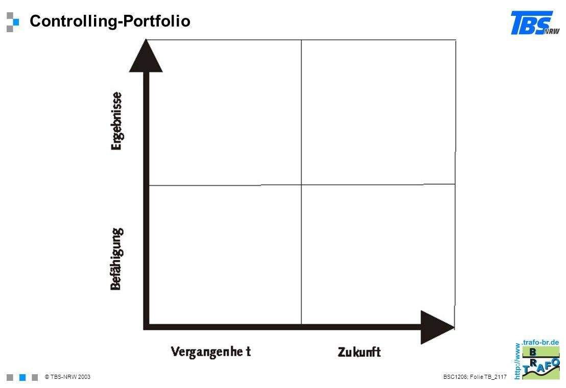 Controlling-Portfolio