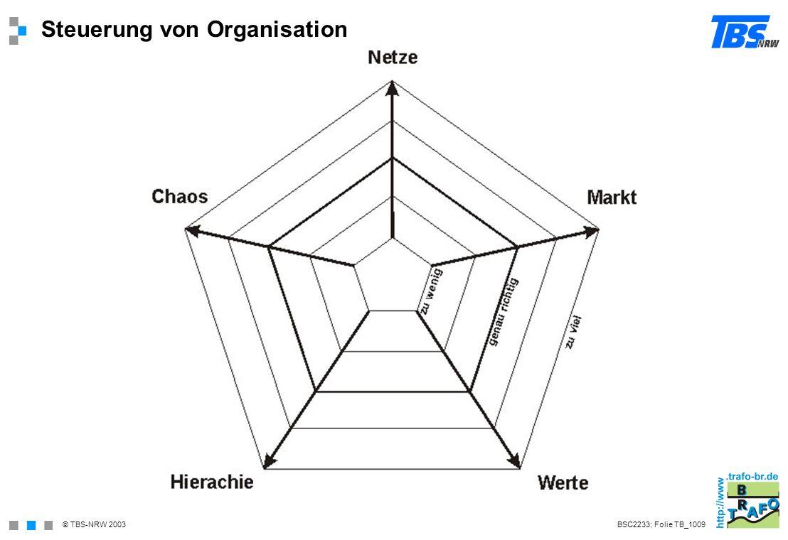 Steuerung von Organisation