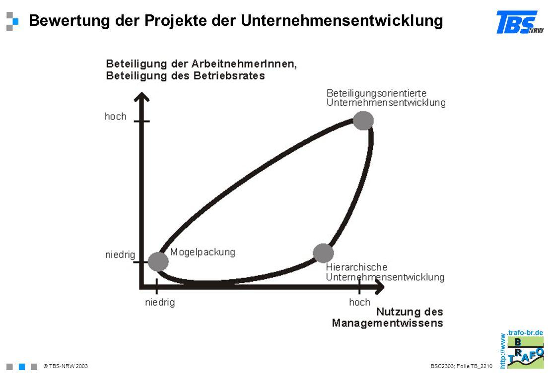 Bewertung der Projekte der Unternehmensentwicklung
