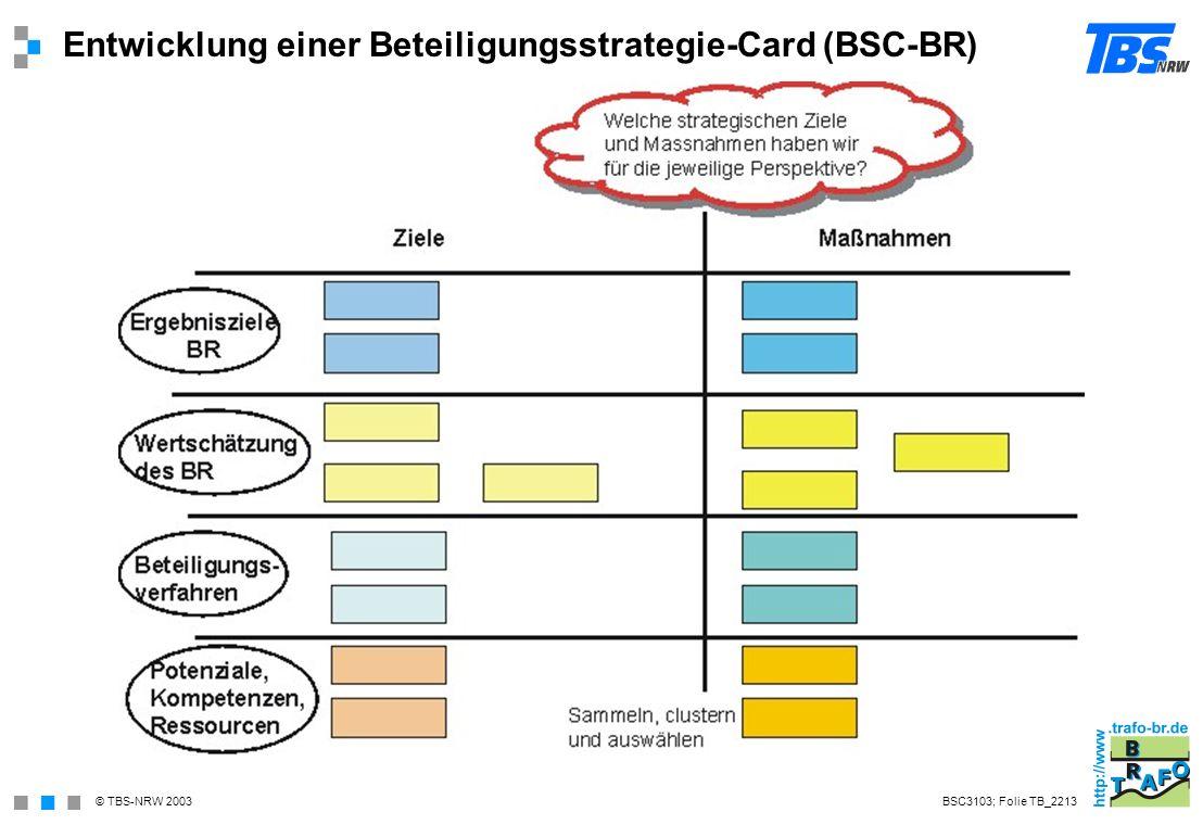 Entwicklung einer Beteiligungsstrategie-Card (BSC-BR)