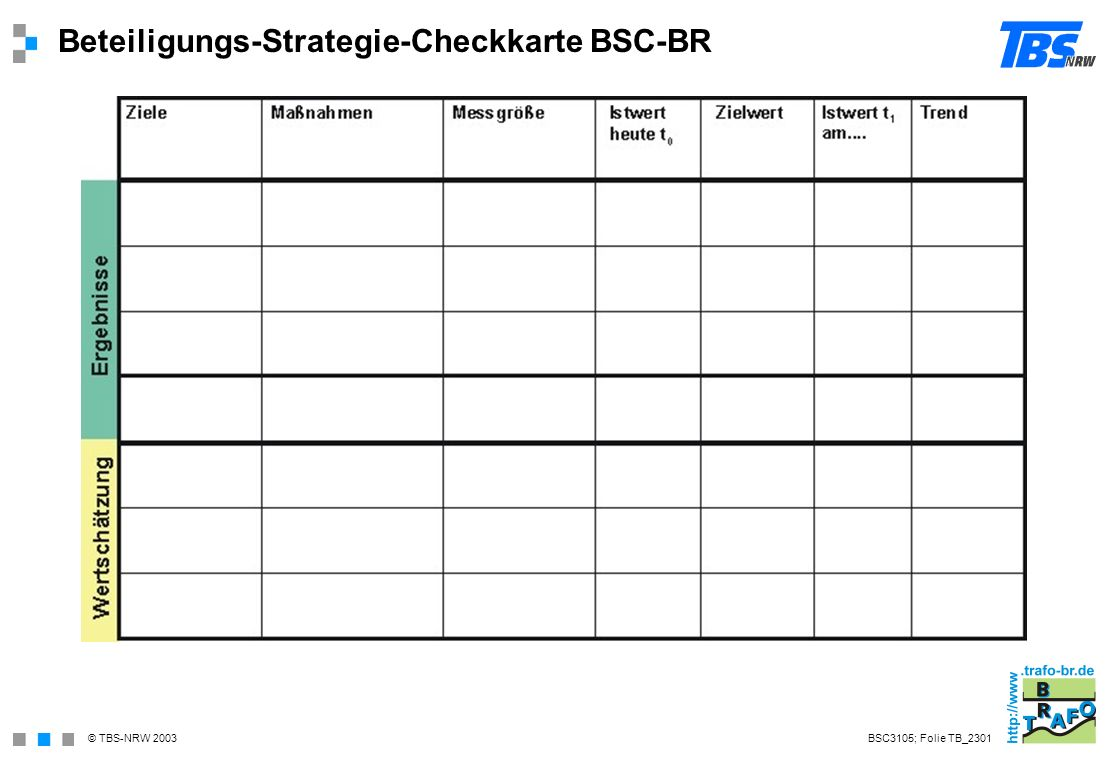 Beteiligungs-Strategie-Checkkarte BSC-BR