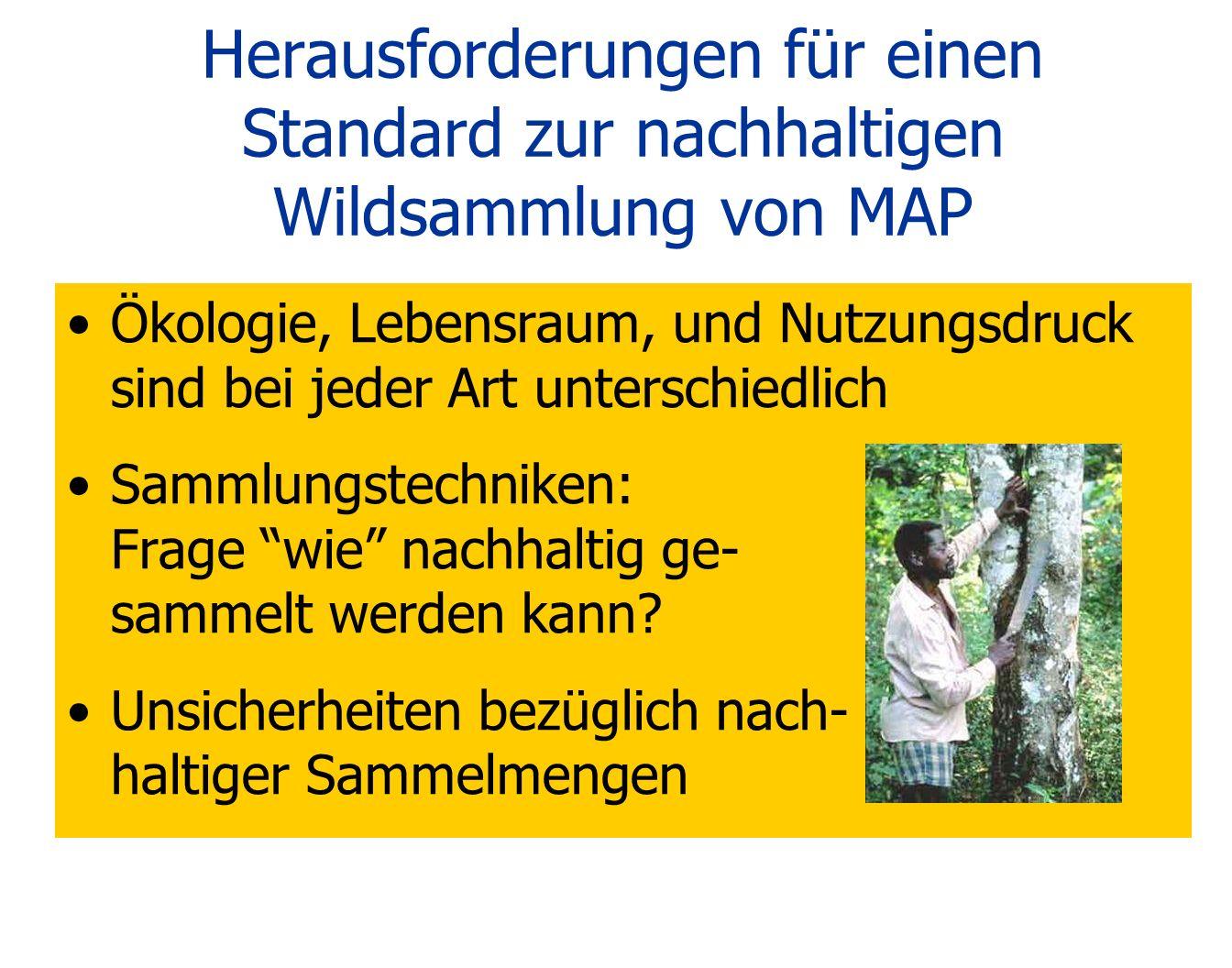 Herausforderungen für einen Standard zur nachhaltigen Wildsammlung von MAP