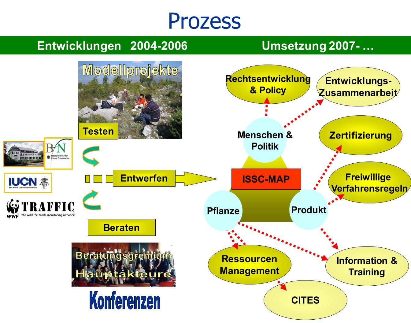 Entwicklungen 2004-2006 Umsetzung 2007- …