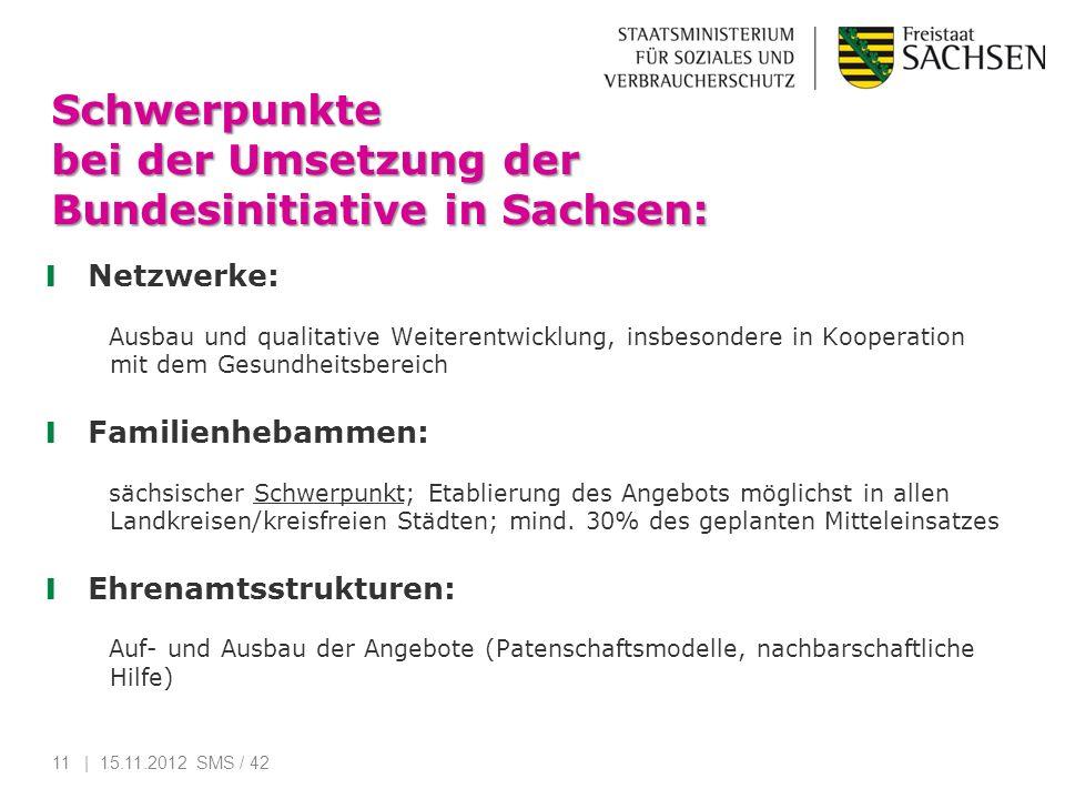Schwerpunkte bei der Umsetzung der Bundesinitiative in Sachsen: