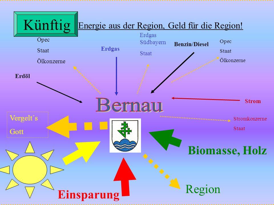 Künftig Bernau Biomasse, Holz Region Einsparung