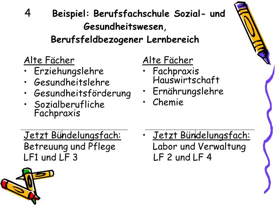 4 Beispiel: Berufsfachschule Sozial- und Gesundheitswesen, Berufsfeldbezogener Lernbereich